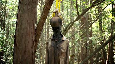 Japonya İntihar Ormanı